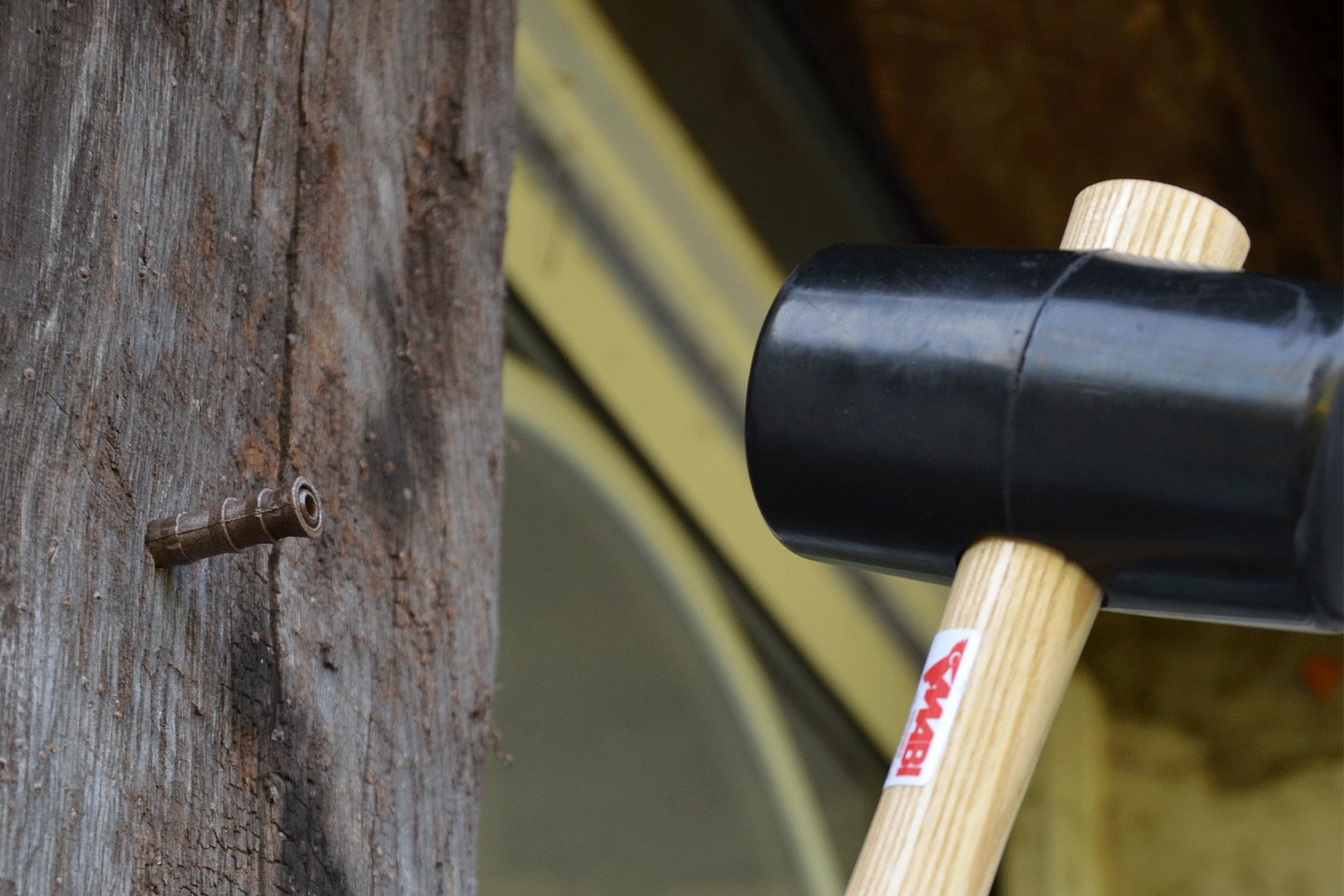 fabricant d'injecteur pour le traitement de charpente